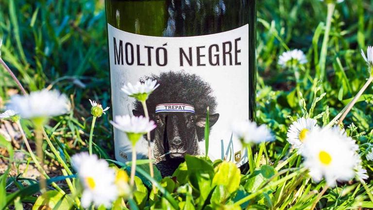 molto negre cava vino spagnolo recensione commento e prezzo winedharma
